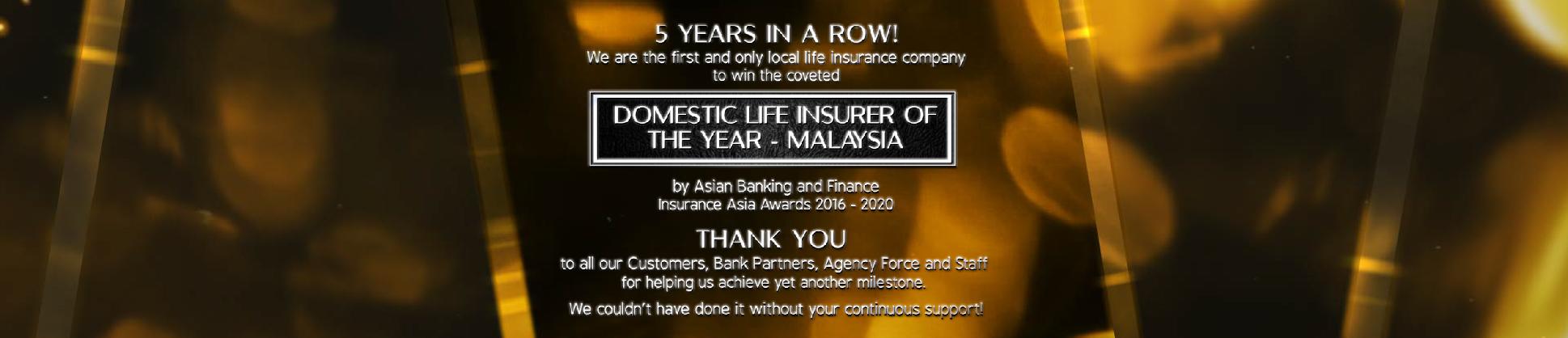 Domestic Life Insurer